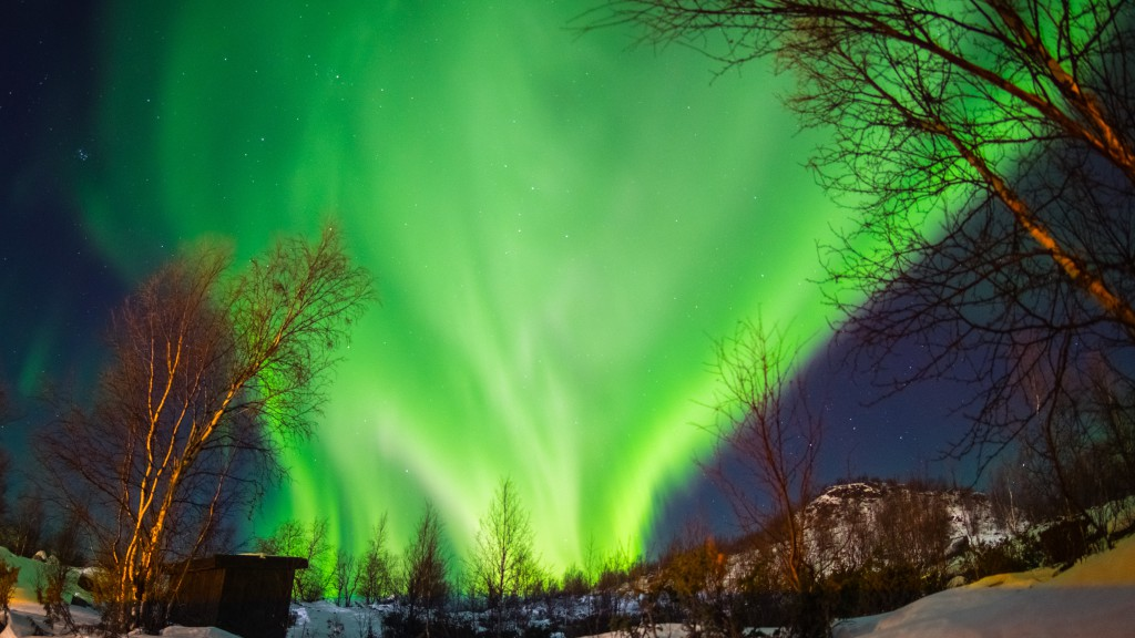 Northern Lights by Gwen Norton