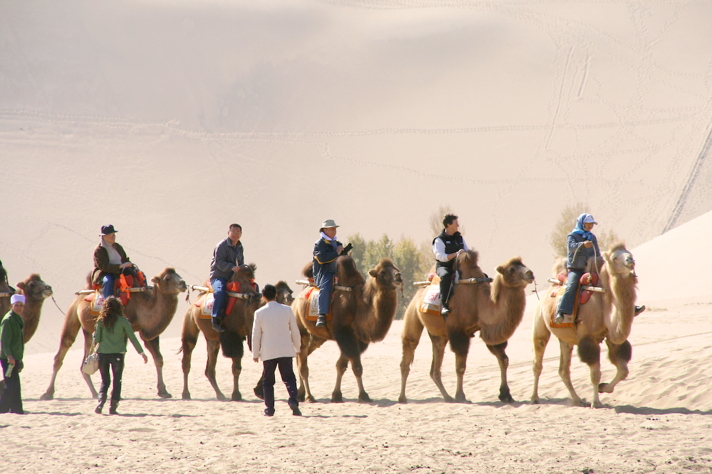 Camel riding near Dunhuang