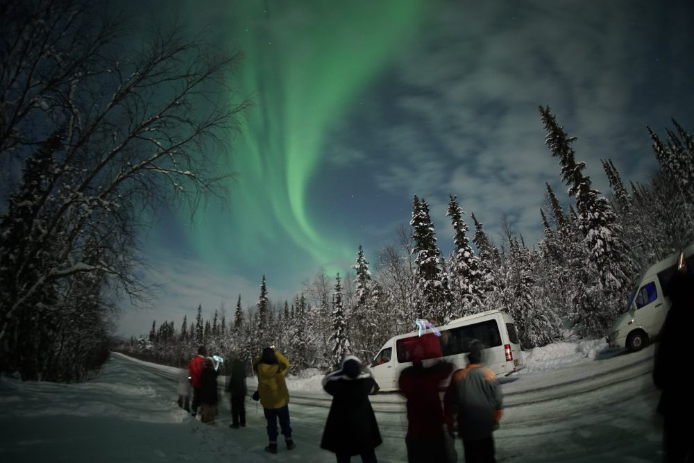 Aurora Borealis search with astronomer