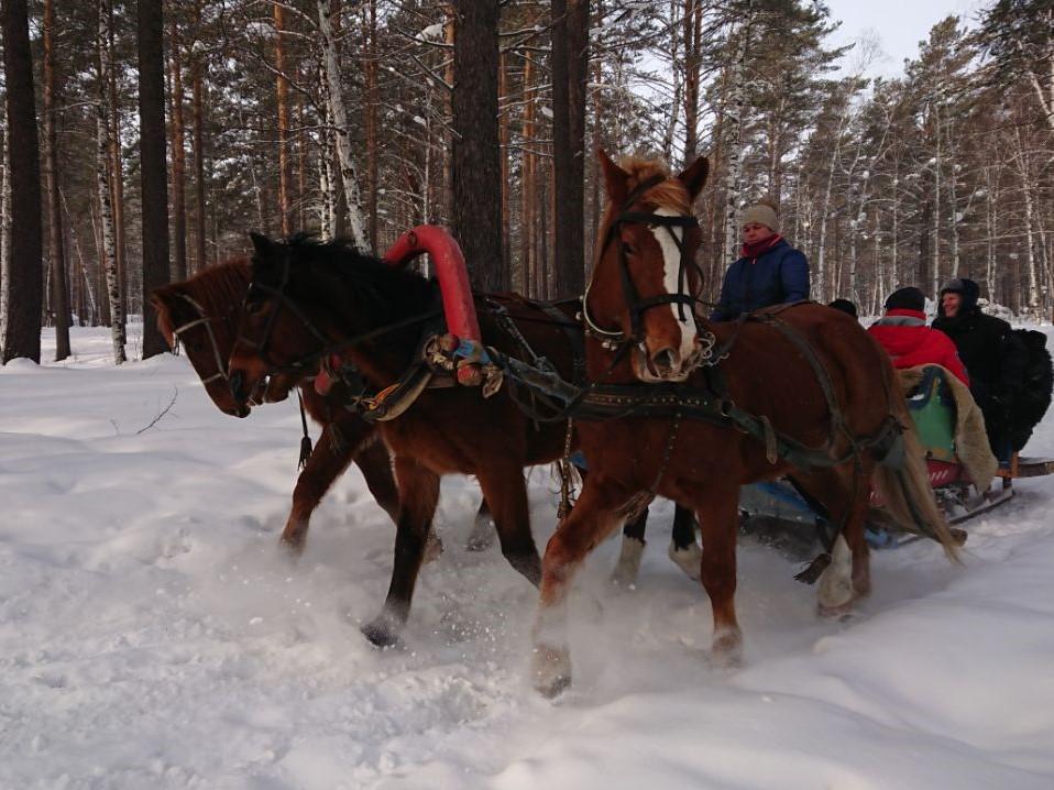 A troika ride in Irkutsk on the Trans-Siberian Express